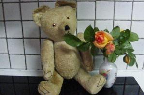 Mon petit Ruby vous envoi un petit coucou et les fleurs du jardin+++
