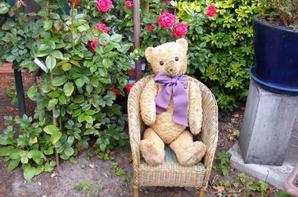 Andrew en compagnie vous envoi un beau dimanche au soleil à vous tous+++