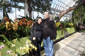 The New York Botanical Garden