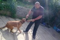 moi , mon homme , nos chiens 2012