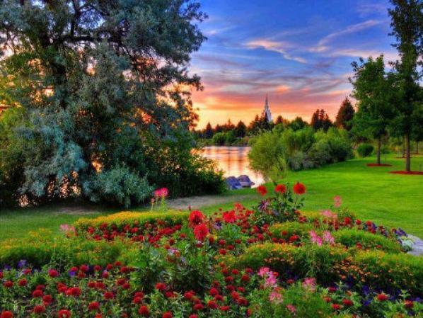 beautiful Nature..