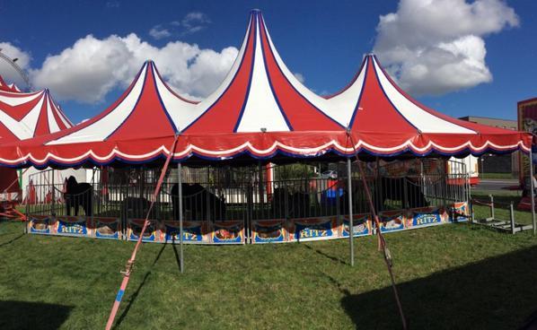 Cirque Romane Ritz Hérouville-saint-Clair 2016