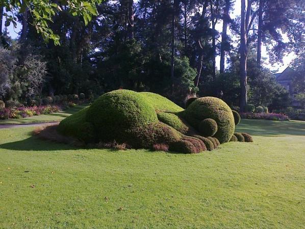 jardins des plantes à Nantes
