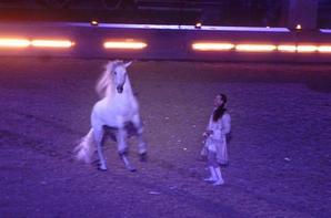 voila deux photos du carrousel royal à Versaille