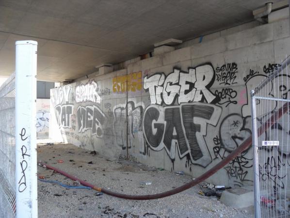 Eponge - Tiger - KIL - GAF - BP91 - LBV - Ratal - Sevnr - MEF