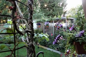 dit is mijn tuin en volieres
