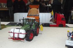 Mes dios à l'expo Agri mini show de Beauvais de dimanche derniers
