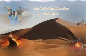 desert sahara morrocco2015