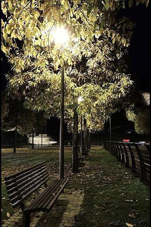 Basses lumières..