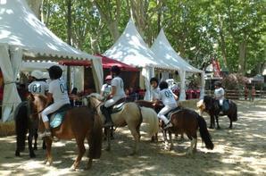 championnat régional Languedoc Roussillon de Horseball à Beaucaire.