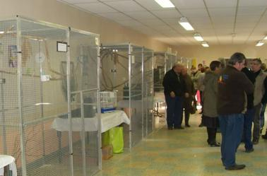 L'EXPO BOURSE A ESTREES