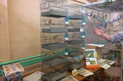 Bourse & exposition d'oiseaux de ce week-end