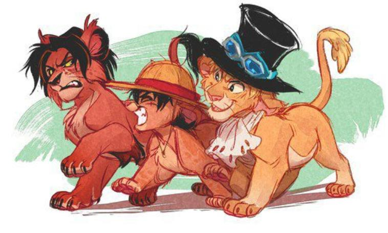 Ace, Sabo, Luffy !