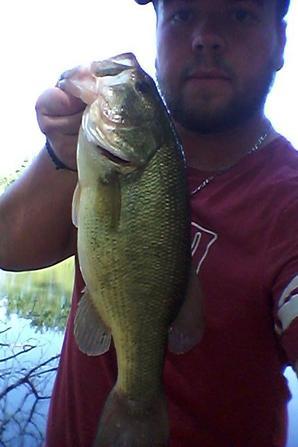 belle sortie aux black bass (une vingtaine de poissons, les plus gros 44 et 49 cm)