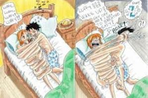 Images de Luffy x Nami ( je sais , ça n'a aucun rapport avec le ZoSan et le ZoNa mais j'avais envie de mettre des images de LuNa )