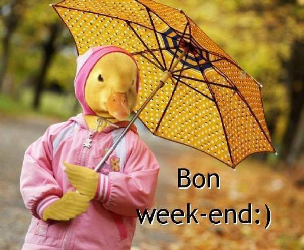 bon week-end a tous bisous