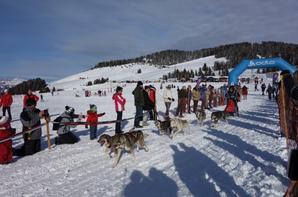 Championnat de France 6 chiens Les Saisies 25-26/01/2014
