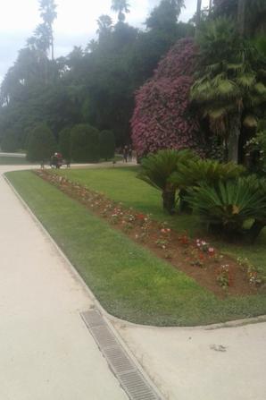 Jardin d'essai du Hamma algerie