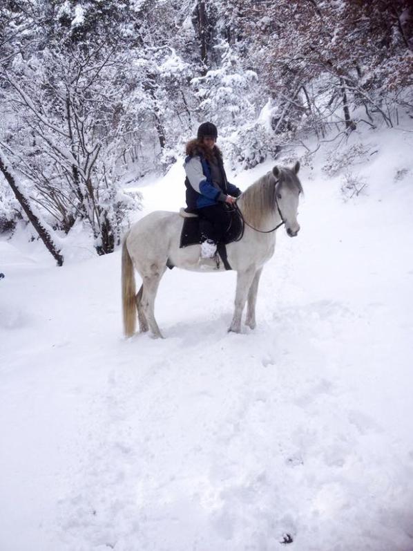 neige 2014