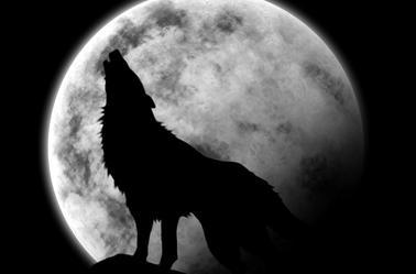 Créatures fantastique mythique et paranormals
