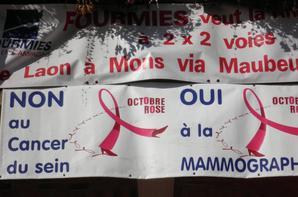 Octobre Rose, quand un territoire bouge contre le cancer du sein...