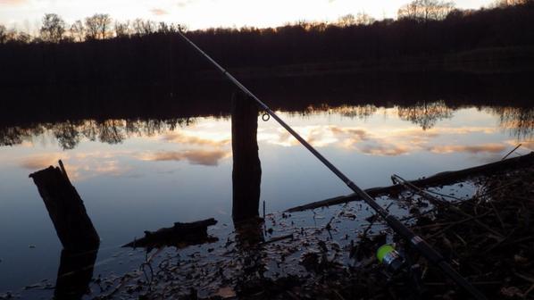 Partie de pêche des carnassiers de nuit