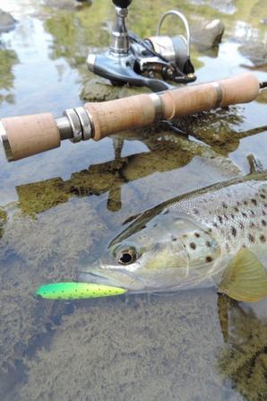 stage pêche ultra léger