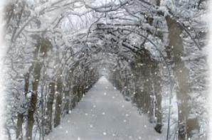 Les flocons de neige ...