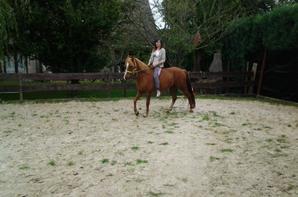 Mon poney <3 !