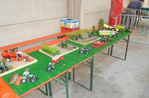 Expo Herinnes 2017 , le dio du fillot !    ( 1ere expo pour le fillot )