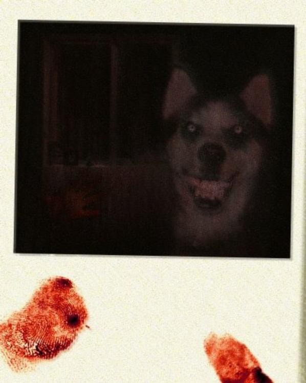 Antoine Daniel , son chien et Sonic