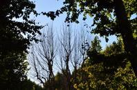 Aix en Provence (5/5)