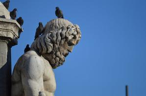 Les arènes de Nîmes et ses environs (6/6)