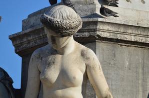 Les arènes de Nîmes et ses environs