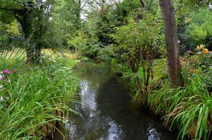 Le jardin de Giverny (2/7)