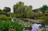 Le jardin de Giverny (3/7)
