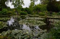 Le jardin de Giverny (4/7)
