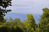 Les jardins du Château de Bizy (5/7)
