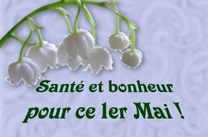 coucou mes amis