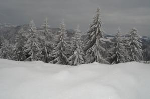 Voilà le paysage que l on retrouve lorsque on vit a 1120m t altitude.