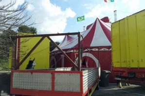 mimi reportage sur le cirque flavio roncalli !