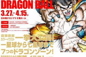 photo de dragon ballz