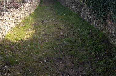 un vieux chemin
