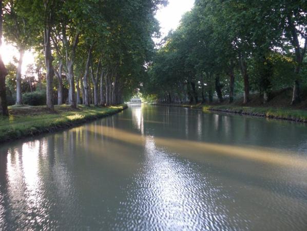 """""""NETTOYONS LES BERGES DU CANAL DU MIDI  LE DIMANCHE 28 SEPTEMBRE""""10H00"""