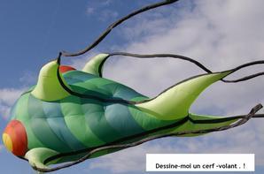 « Dessine-moi un cerf –volant . !» A  L'Occasion du FESTIVAL RÉSERVOIR D'ARTISTES  du 27 avril au 13 mai 2018 .A  CARCASSONNE