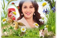 I LOVE Madhuri ji