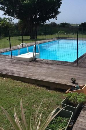 Posey en Guadeloupe 25/07~20/08 ☀️
