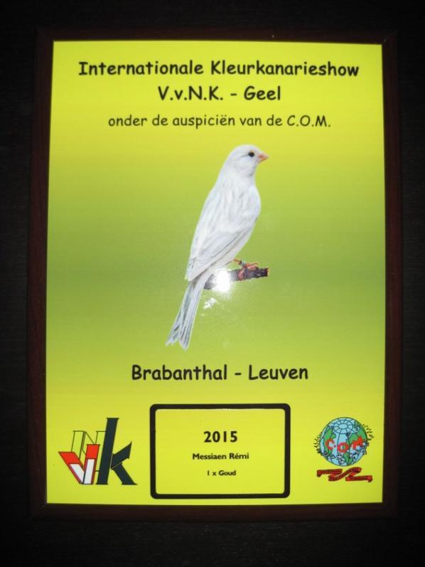 Résultat Leuven