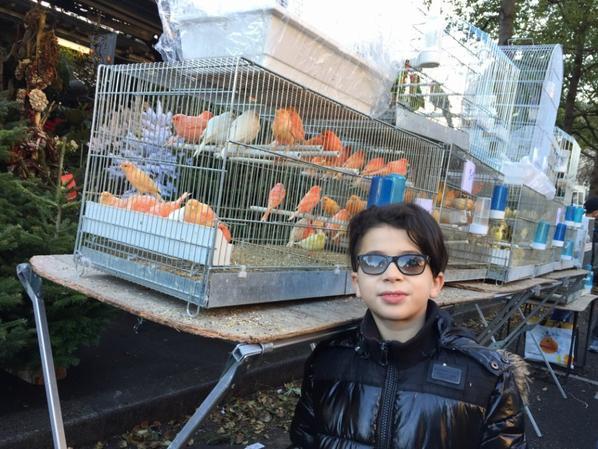 pti tour au marché aux oiseaux ce matin