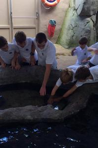 À l'aquarium de St Malo (1/2)